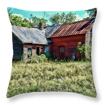 Little Red Farmhouse Throw Pillow by Paul Ward