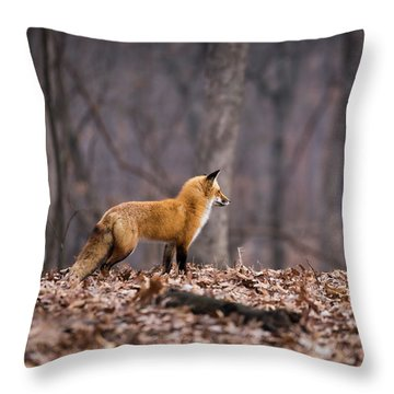 Throw Pillow featuring the photograph Little Red Fox by Andrea Silies