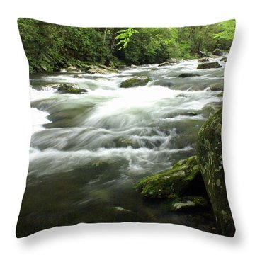 Little River 3 Throw Pillow by Marty Koch