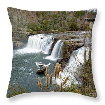 Little River Falls Throw Pillow