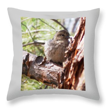 Little Shy Throw Pillow by Marika Evanson