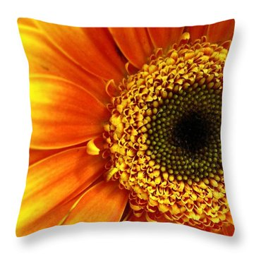 Little Sun Throw Pillow by Rhonda Barrett