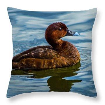 Little Swimmer  Throw Pillow
