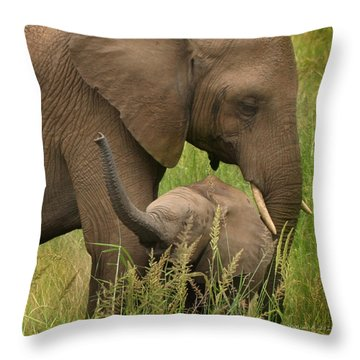 Little Toot Throw Pillow