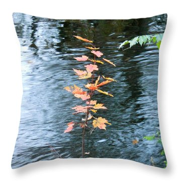 Throw Pillow featuring the photograph Little Tree by Kay Gilley