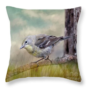 Throw Pillow featuring the photograph Little Warbler In Louisiana Winter by Bonnie Barry
