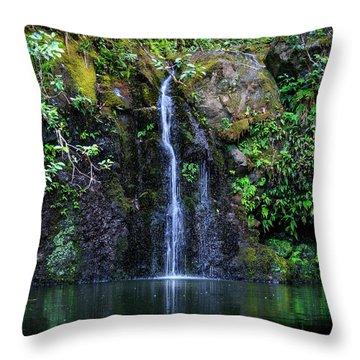 Little Waterfall Throw Pillow