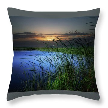 Little Waters Throw Pillow