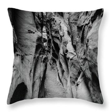 Little Wild Horse Canyon Bw Throw Pillow