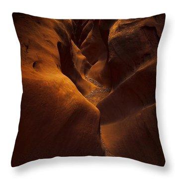 Little Wild Horse Throw Pillow