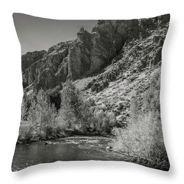 Little Wood River 2 Throw Pillow