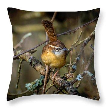 Little Wren 1 Throw Pillow