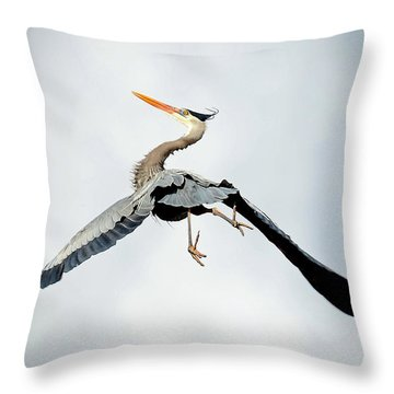 Throw Pillow featuring the photograph Live Free And Fly by Rodney Campbell