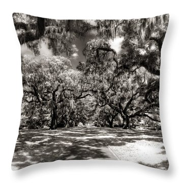 Live Oak Allee Infrared Throw Pillow