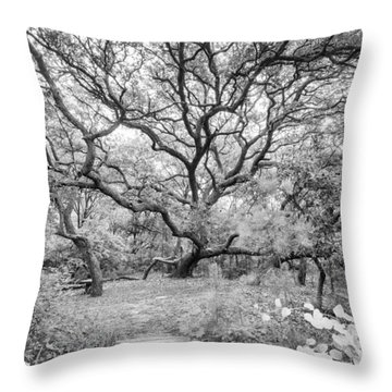 Live Oak Retreat Throw Pillow by Alan Raasch