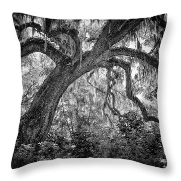 Live Oak Throw Pillow