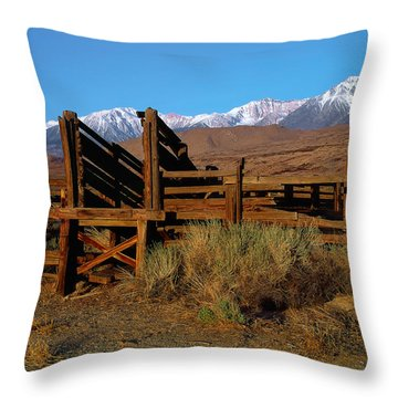 Livestock Chute Throw Pillow