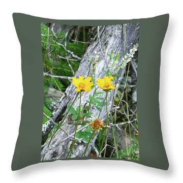 Throw Pillow featuring the photograph Living And The Dead by Sally Sperry