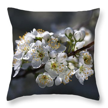 Living In Sring  Throw Pillow