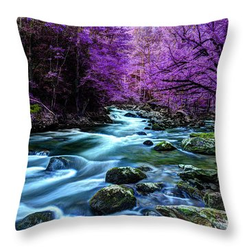 Living In Yesterday's Dream Throw Pillow by Michael Eingle