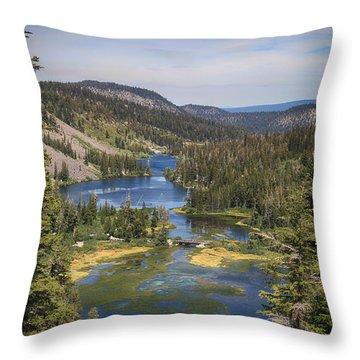 Living Throw Pillow
