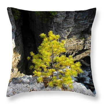 Living On The Edge Throw Pillow by David Lee Thompson