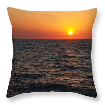 Throw Pillow featuring the photograph Living The Life by Robert Margetts