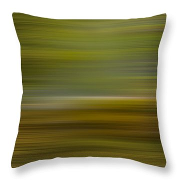 Living Water X Throw Pillow