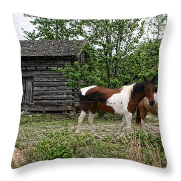 Livingston Cabin Throw Pillow