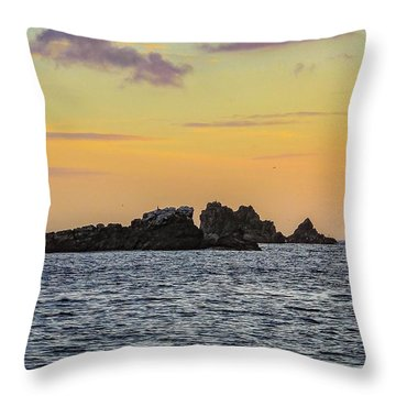 Lizard Point At Sunset  Throw Pillow