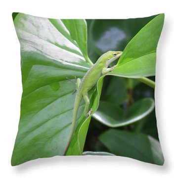 Lizard Waimea Trail Throw Pillow