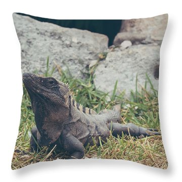 Lizards And More Throw Pillow