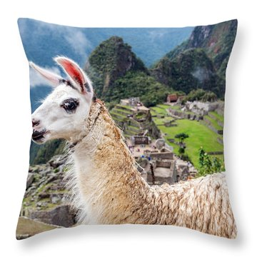 Llama At Machu Picchu Throw Pillow by Jess Kraft