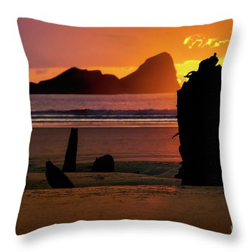Llangennith Helvetia Wreck 2016 Throw Pillow