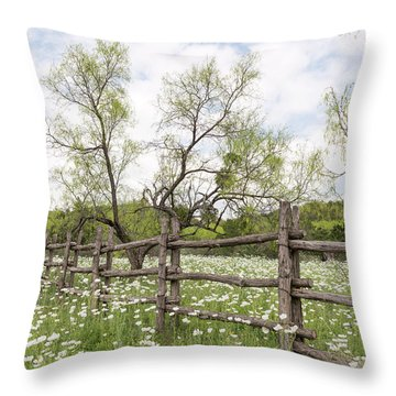 Llano County Wildflowers Throw Pillow