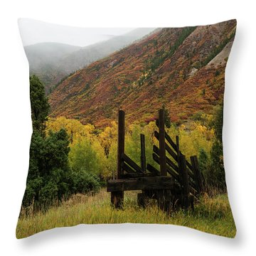 Loading Chute - 9550 Throw Pillow