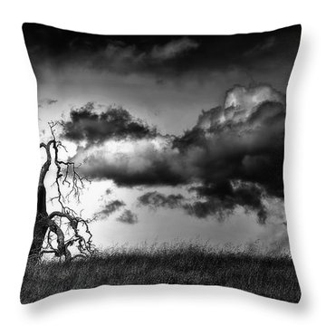 Loan Tree Throw Pillow