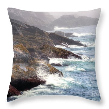 Lobster Cove Throw Pillow by Tom Cameron