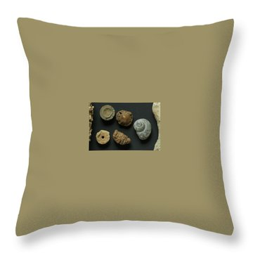 Local Fossils  Throw Pillow
