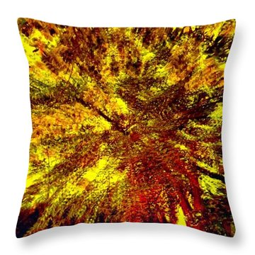 Throw Pillow featuring the photograph Lock 3 by EDi by Darlene