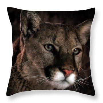 Locked Onto Prey Throw Pillow