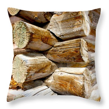 Log Cabin Corner Throw Pillow