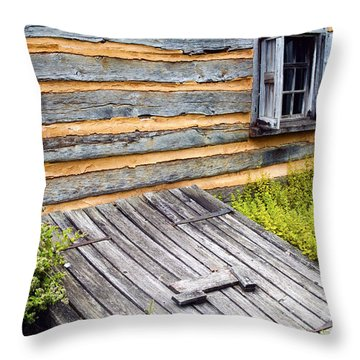 Log Cabin Storm Cellar Door Throw Pillow by Paul W Faust -  Impressions of Light