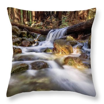 Log Falls On Limekiln Creek Throw Pillow