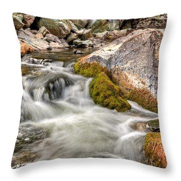 Logan Creek, Montana 2 Throw Pillow