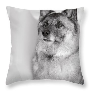 Loki Bw Throw Pillow