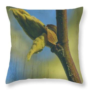 Throw Pillow featuring the photograph London Plane Buds B - Platanaceae Fine Art by Jacek Wojnarowski