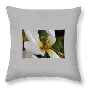 Throw Pillow featuring the photograph London White Tulip by Jolanta Anna Karolska