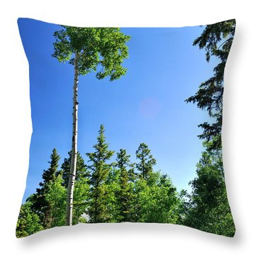 Lone Aspen Throw Pillow