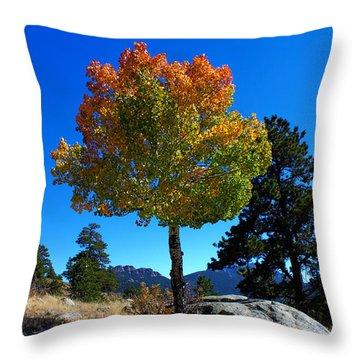 Lone Aspen Throw Pillow